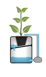 Système hydroponique NFT
