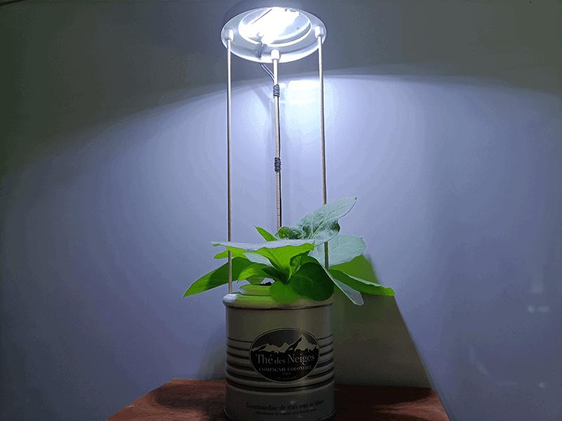 LED sur potager 3D