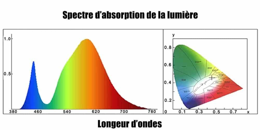 Détail du spectre lumineux